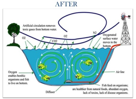 about aeration